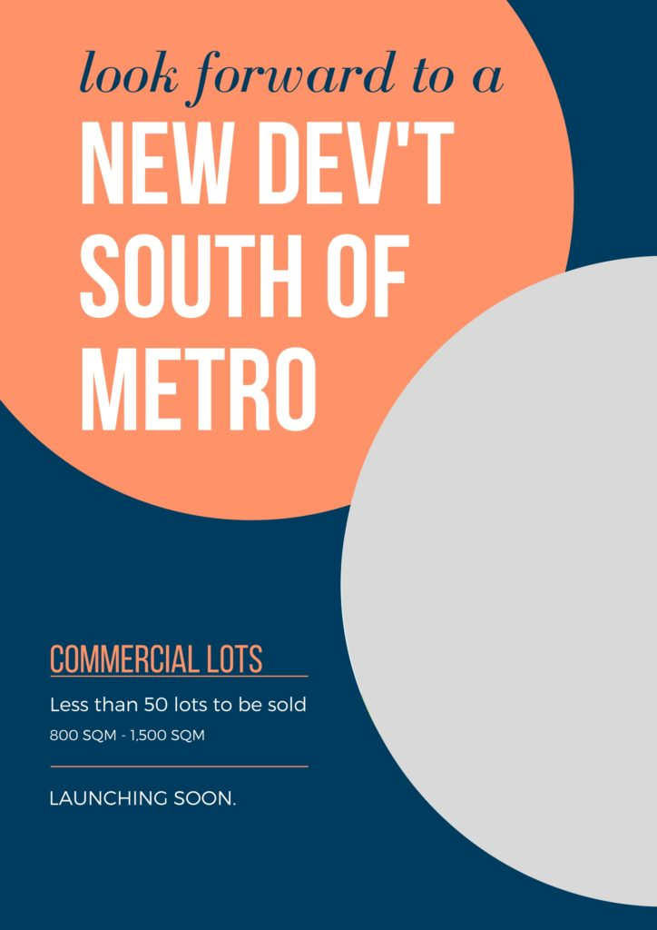 new dev'tsouth of metro (1)